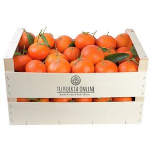 Mandarinas 15Kg.(1,73€/kg./clemenvillas)