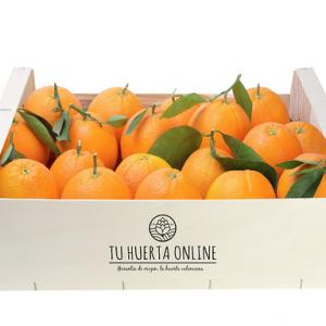 Naranjas mesa 10 Kg (2,3 Kg)