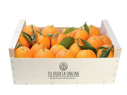 naranjas de mesa de Valencia
