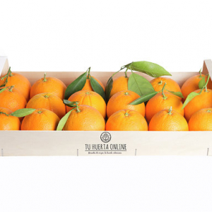 Naranjas zumo 5 Kg