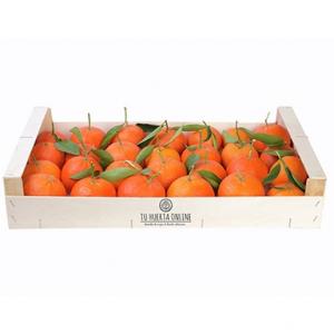 Mandarinas  5 Kg + 1 kg de regalo= 6Kg