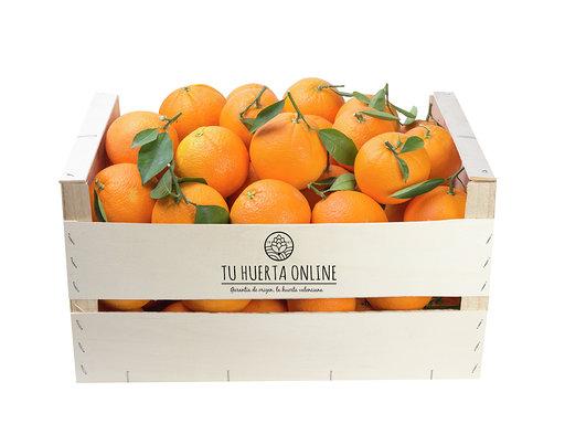 Qué propiedades tiene la naranja 2
