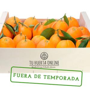 Naranjas-mesa-fuera-temporada