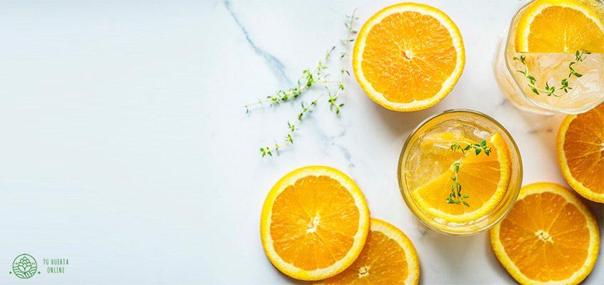 Propiedades de la naranja