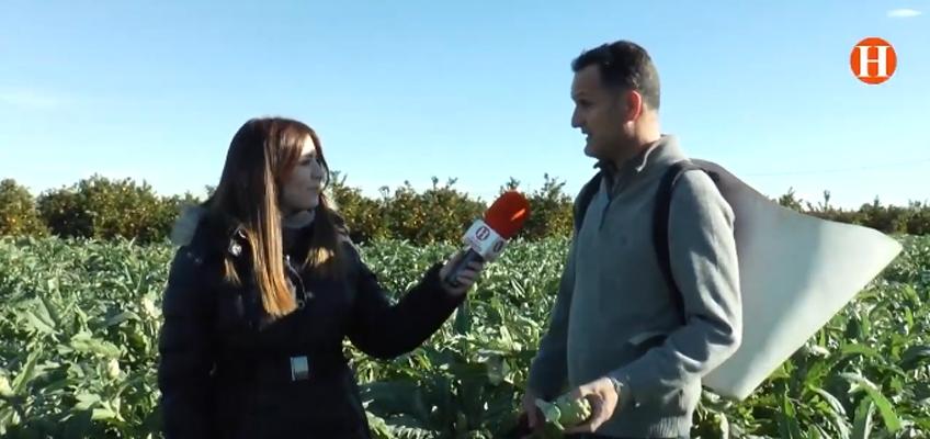 portada blog 1 - Tu Huerta Online en Ribera Televisió, espacio televisivo de campo y medio ambiente