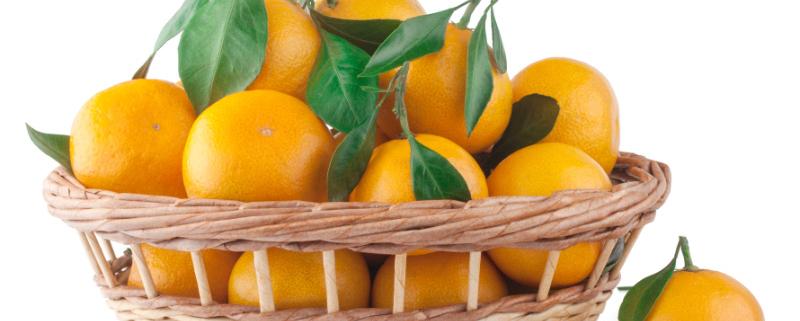 como conservar las naranjas